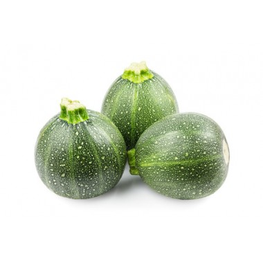 COURGETTE RONDE France