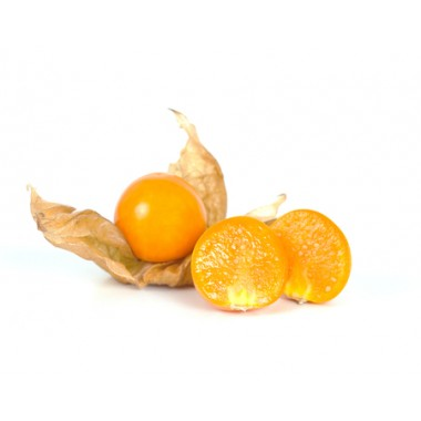 PHYSALIS Colombie